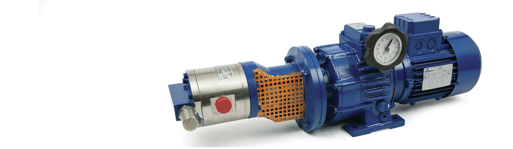 Gear pump MOZER IF